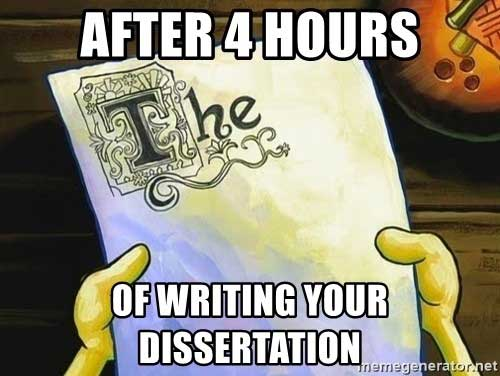 After 4 hours of writing your dissertation meme