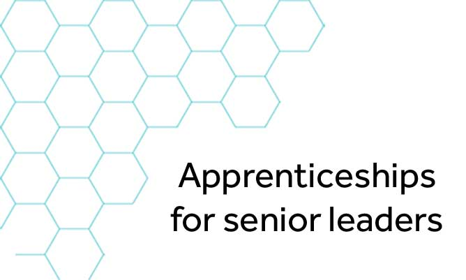 Apprenticeships for senior leaders