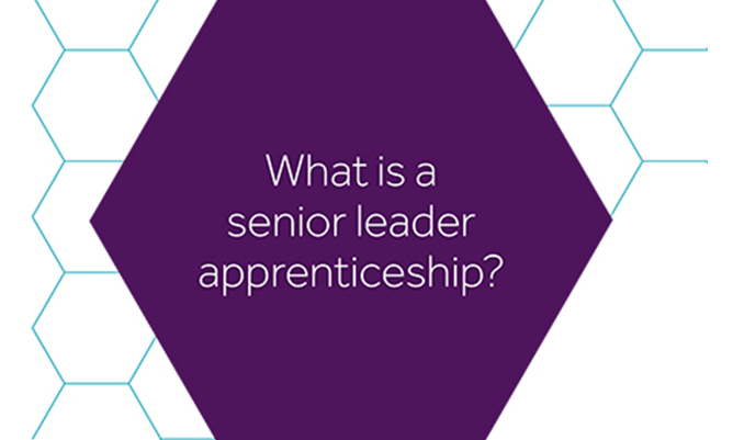 Senior Leader Apprenticeships: Webinar 17 May 2021