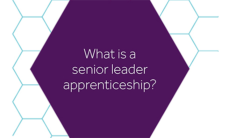 what is a senior leader apprenticeship