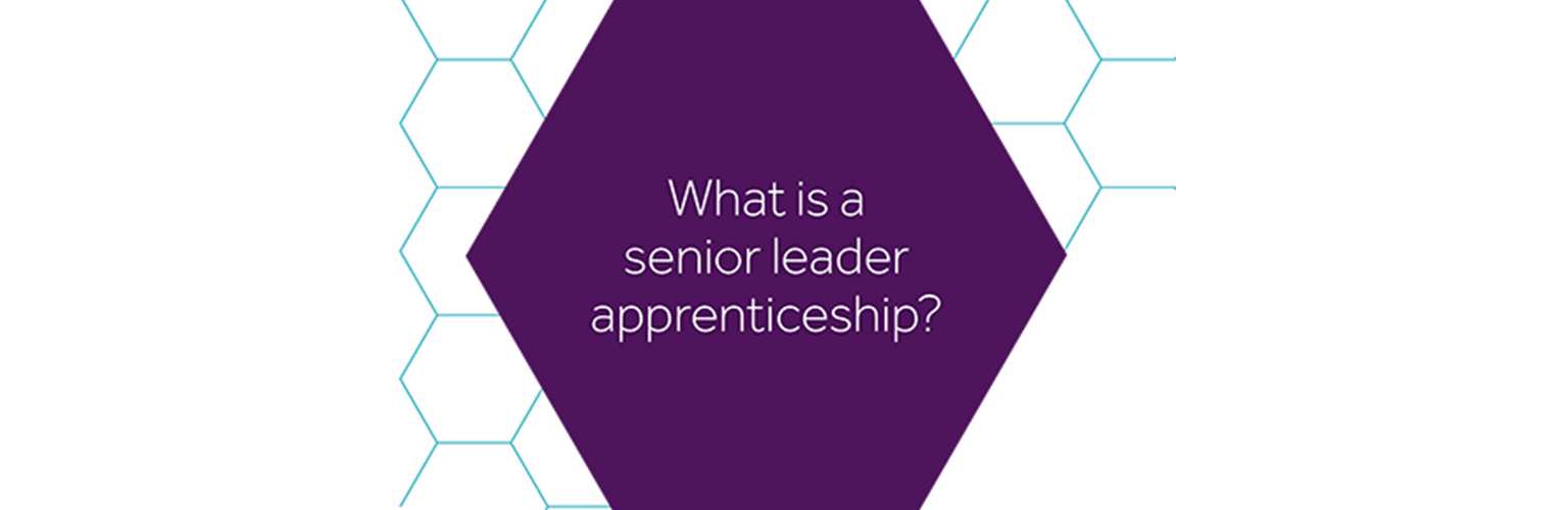 what is a-senior leader apprenticeship