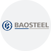 Case Study - Baosteel Group logo