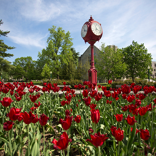 Red clock on Kelley campus