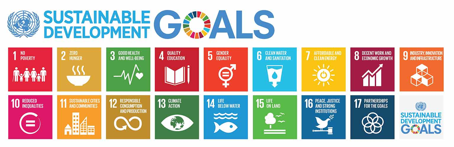 united nations sustainable goals