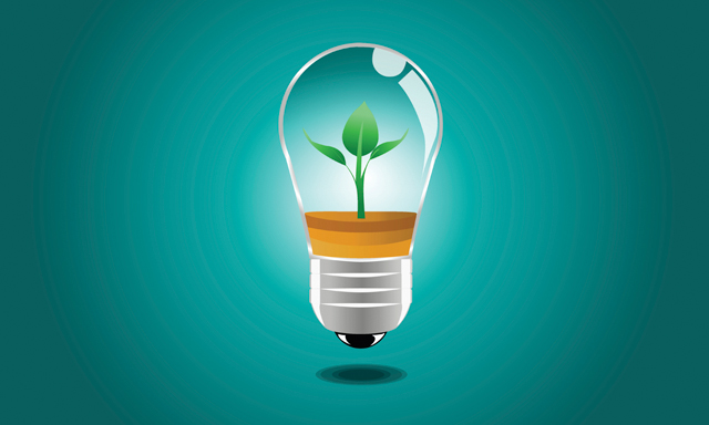 An image of a light bulb with a plant growing inside of it on a teal background.