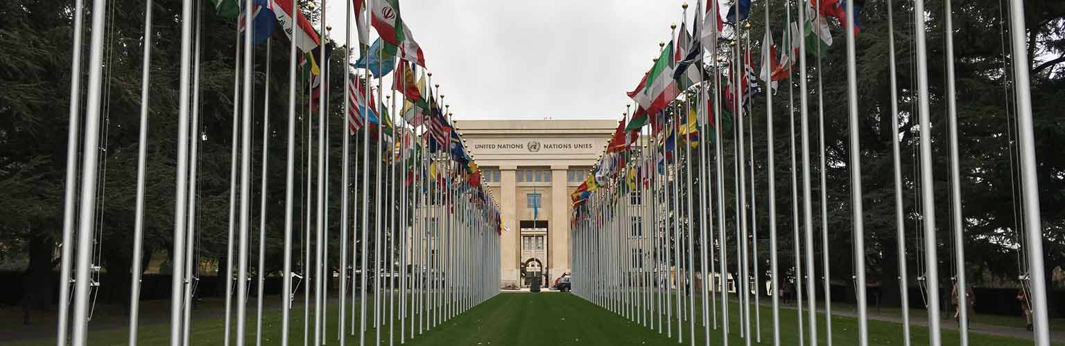 un-flags-main