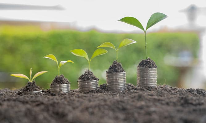 Step of coins stacks with tree growing on top, nature background, money, saving and investment or money planning concept.