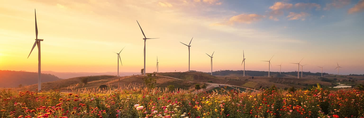 The Centre for the Analysis of Investment Risk (CAIR) - Image of wind turbines